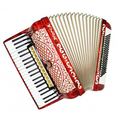 Horch Deluxe 120 Bass, Luxurious Accordion made in Germany, New Straps Case 1418, Very Beautiful and Powerful Sound!