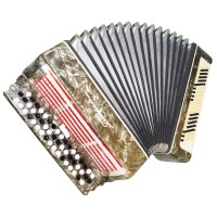 Folk Ukrainian Bayan Polissya, 100 Bass, Chromatic Button Accordion, Case, 1482, B System, Very Nice Sound!