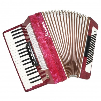 NEW! Piano Accordion Aelita, 96 Bass, made in Russia, incl. Case, Straps 1525, Very Beautiful Keyboard Accordian! Excellent sound!