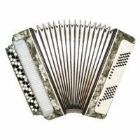 Folk Bayan Ukraine, 3 Rows Chromatic Button Accordion, 120 Bass, New Straps 1604, Rich and Beautiful Sound.