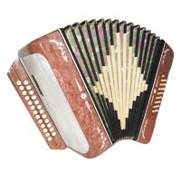 Harmonica Folk Button Accordion 25x25 2 Register Garmon Belarus, New Straps 1659, Very Beautiful sound!