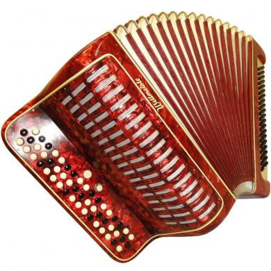 Weltmeister, 100 Bass, 2 Registers, German Button Accordion Bayan, 209